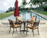 屋外の/Rattan/セットされる庭/テラス/ホテルの家具の鋳造アルミ椅子及び表(HS 3195C&HS 7126DT)