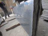 De opgepoetste die G654 Plakken van het Graniet aan de Plak van de Grootte worden gesneden