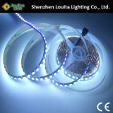 5050 lampada della striscia di 120LEDs/M 12V con Ce