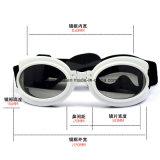 HundSunglass Augen-Abnützung-UVschutz-Schutzbrille-Haustier-Form wasserdichtes MehrfarbenEsg10230