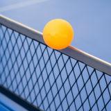 Jeu de tennis de table, y compris les palettes de 2 et 3 balles