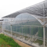 Factory Price PC Sheet Greenhouse for Angriculture with Hydroponic System