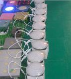 Yaye 18保証2 Ytearsが付いている熱い販売法の競争価格IP65 PAR56 25W RGB LEDのプールライト