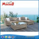Nova piscina simples & Indoor importados conjuntos de sofá