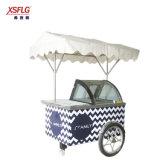 2018 Novo Estilo Xsflg-Ice Nata Stick Popsicle Cart-Ce