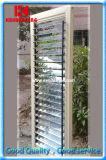 Ouvrable Indoor Aluminium/PVC stores à rouleaux de plantation/obturateur
