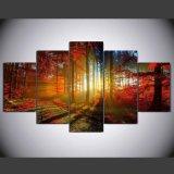 HD imprimió la pintura impresa bosque en el cuadro Ym-010 enmarcado lona del cartel de la impresión de la decoración de la lona