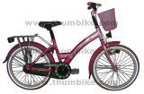 """"""" vélo de la ville 20 (TMS-20GA)"""