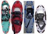 De Laars van de ski (frd-005)