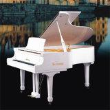 Grand Piano B15