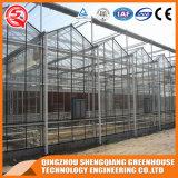 Landwirtschaft PC Sheeet Gewächshaus mit Ventilations-System