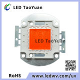Grow Lighting LED Chip 30-100W Spectre complet 380-840nm