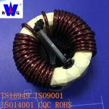Высокая степень защиты Тороидальный / Common Mode Choke Coil с Пластиковый корпус Potting