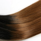 """1 똑바른 T 색깔 머리 16 """" - 22 """" 도매가 Virgin 브라질 사람의 모발 직물에 대하여 행복 에메랄드 Sg 3"""