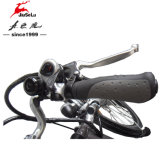 CE 700C Aluminium Alloy Frame 250W sans brosse moteur E-Bike (JSL-034B)