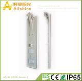 Nuevo 30W 5 años de Lifi Po4 de la batería de la garantía de lámpara al aire libre LED de la luz integrada de la energía solar