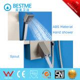 Painel de chuveiro de aço inoxidável com três funções de venda quente (BF-W015)
