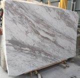 屋内および屋外の白い静脈のVolakasの白い大理石の平板