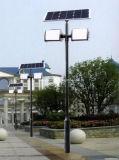 Indicatore luminoso solare del giardino del doppio braccio con 4m palo chiaro