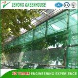 L'agriculture/commercial pour la plantation de serre en verre/fleurs/Eco hôtels.