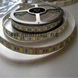 Tira flexible competitiva de calidad superior del precio 5050 SMD LED LED