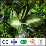 Les fournisseurs de paysage Haut Panneaux de plantes artificielles pour la décoration murale
