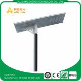 L'approvisionnement de constructeur a intégré tous dans un réverbère solaire 100W avec des certificats d'IP 65