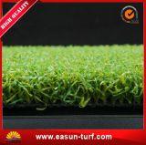 الصين صناعة جيّدة نوعية [ب] اصطناعيّة لعبة غولف عشب يضع اللون الأخضر