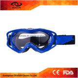 Sporten Beschermende Moto Eyewear van Eyewear van de Beschermende brillen van de Ski van de Sneeuwscooter van de Motorfiets van de Glazen van de Toestellen van de Motocross van de motorfiets ATV de Beschermende