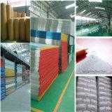 Hoja acanalada sólida durable de la transmisión ligera del policarbonato para los productos plásticos