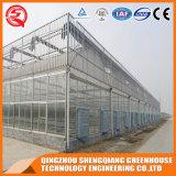 상업적인 강철 프레임 폴리탄산염 장 온실