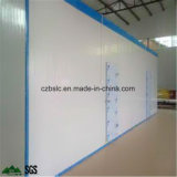Precio de fábrica para la conservación en cámara frigorífica, congeladora, cámara fría, equipo de refrigeración