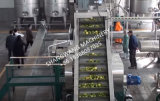 Ligne de production automatique de jus de fruit 2t / H
