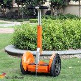 電気自己のバランスのスクーターの強力な大人の電気スクーター