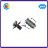 DIN/ANSI/BS/JIS Kohlenstoffstahl/aus rostfreiem Stahl 4.8/8.8/10.9 quere quadratische Auflage-Kombinations-Schrauben für Gebäude/Gleis