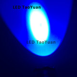 lanterna elétrica UV do diodo emissor de luz da tocha UV 3W de 365nm 395nm