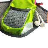 Armbags di vendita caldo in linea mette in mostra i sacchetti del sacchetto per il telefono mobile