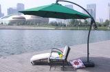 Rattan Furniture-10 esterno del Daybed di svago