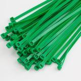 Nylon 66 PA-selbstsichernder Plastikkabelbinder