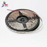 赤いカラーIP20 SMD5050チップ60LEDs 14.4W DC24V LEDストリップ