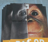 Bandera lateral doble al aire libre de alta resolución del vinilo de la impresión que hace publicidad (SS-VB113)