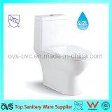 Badkamers Upc/de kom van het Toilet Cupc