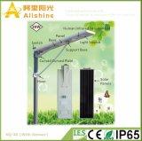 Nieuwe 30W 5 Geïntegreerdeh LEIDENE van de Batterij van Lifi van de Jaar Po4 de Garantie Lichte OpenluchtLamp van de ZonneMacht