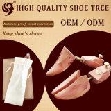 Einfach hellen hölzernen Schuh-Baum nehmen