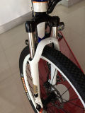 E-Bicicleta da montanha do preço da venda quente boa com aprovaçã0 do Ce