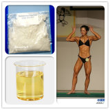 Верхнее качество и таможни Anavar Oxandrin CAS пропуска 100%: 53-39-4