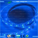 Cerimonia nuziale IP67 che decora l'indicatore luminoso di striscia corrente costante di SMD5050 RGB