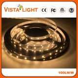 SMD 2835 RGB Flexible LED Strip Light pour lampadaires