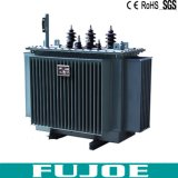 Trasformatore a bagno d'olio elettrico a tre fasi di perdite basse S09