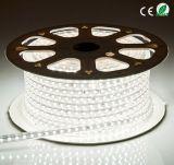 Striscia della decorazione LED di Shezhen AC120V 230V SMD5050